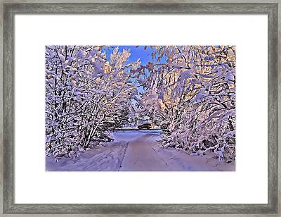 Wonderful Winter Day Framed Print by Alexey Bazhan