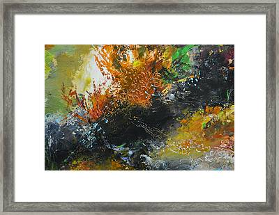 Wonders Of Coral Framed Print by Christopher Chua