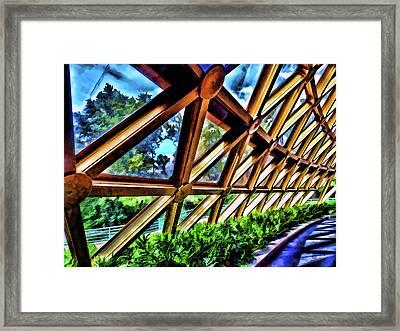 Wonders Of Life Framed Print