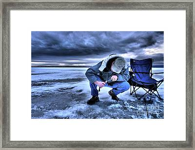 Wonders Of Nature  High Res  Framed Print