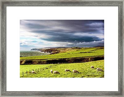 Framed Print featuring the photograph Wonders Of Thrumster by Anthony Baatz