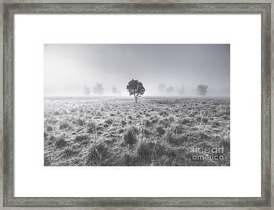 Wondrous Misty Background Framed Print by Jorgo Photography - Wall Art Gallery