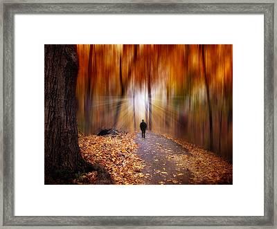 Wondrous Woodland Framed Print by Jessica Jenney