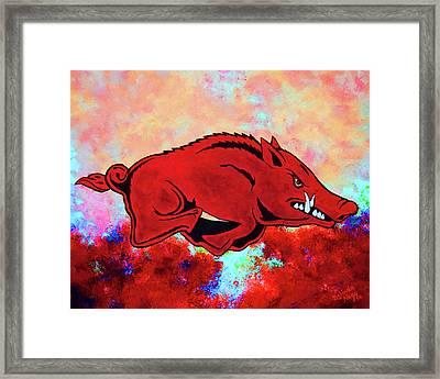 Woo Pig Sooie 3 Framed Print by Belinda Nagy