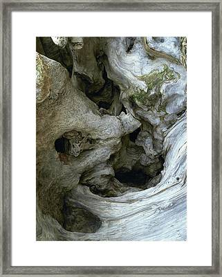 Wood Abstract Framed Print