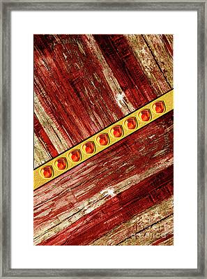 Wood And Jewels Framed Print by Gaspar Avila
