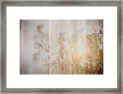 Wood Background With Branches Double Exposure Style With Instagr Framed Print by Brandon Bourdages