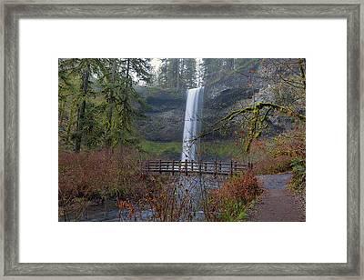 Wood Bridge On Hiking Trail At Silver Falls State Park Framed Print