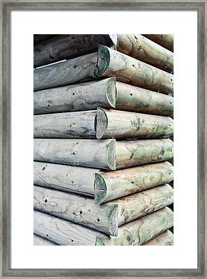 Wood Cabin Framed Print