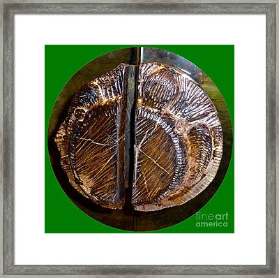 Framed Print featuring the photograph Wood Carved Fossil by Francesca Mackenney