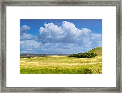 Wood Copse On A Hill Framed Print