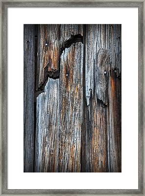 Wood Deatail Framed Print
