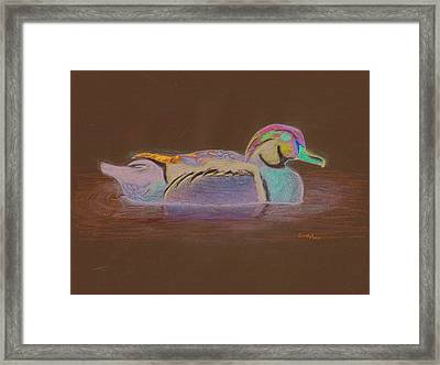 Wood Duck Framed Print by Cynthia  Lanka