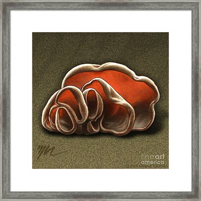 Wood Ear Mushrooms Framed Print