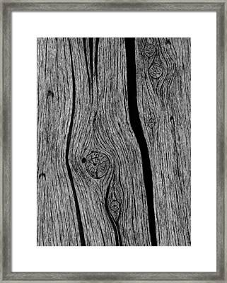 Wood Grain 1 Framed Print by Ed Einboden