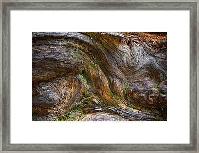 Wood Grain Framed Print