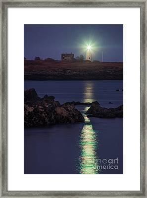 Wood Island Lighthouse At Night Framed Print by Benjamin Williamson