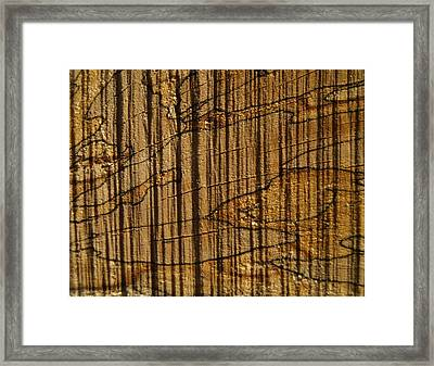 Wood Framed Print by Michael Canning
