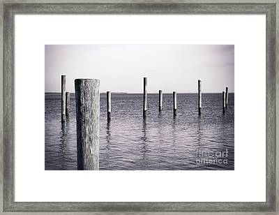 Framed Print featuring the photograph Wood Pilings In Monotone by Colleen Kammerer