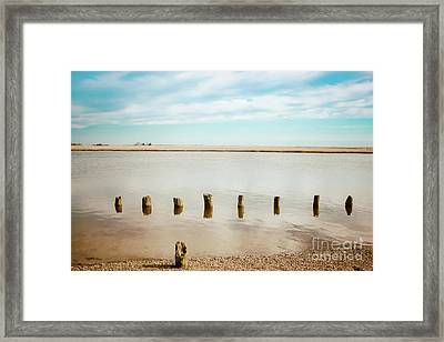 Framed Print featuring the photograph Wood Pilings In Shallow Waters by Colleen Kammerer