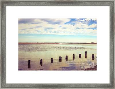 Framed Print featuring the photograph Wood Pilings In Still Water by Colleen Kammerer