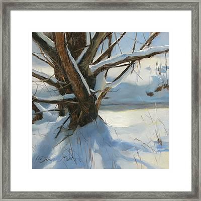 Wood Run Stream Framed Print by Anna Rose Bain