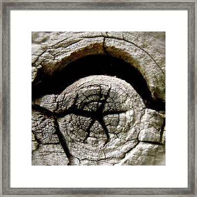 Wood Star Framed Print by Tina Valvano