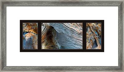 Wood Triptych Framed Print by Leland D Howard