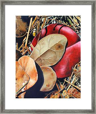 Woodbine's Fall Framed Print