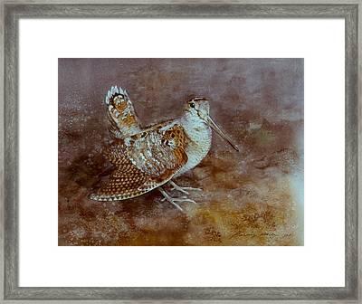 Woodcock Framed Print by Attila Meszlenyi