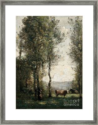 Wooded Landscape With Cows Framed Print