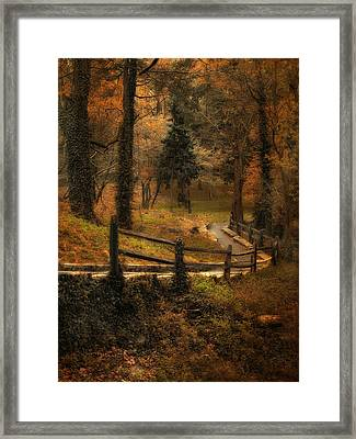 Wooded Path Framed Print by Jessica Jenney