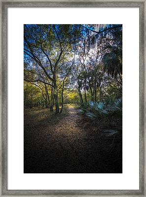 Wooded Path Framed Print by Marvin Spates