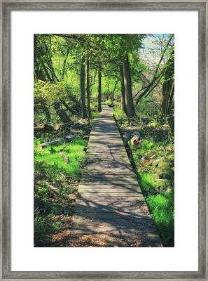 Wooded Path - Spring At Retzer Nature Center Framed Print