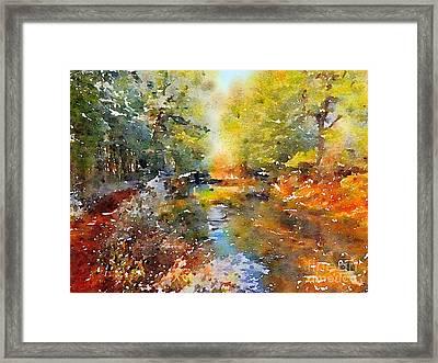 Wooded Stream Fishing Stockton Nj Framed Print