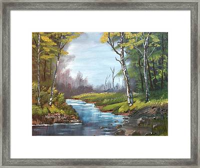 Wooded Stream Framed Print