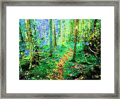 Wooded Trail Framed Print by Dave Martsolf