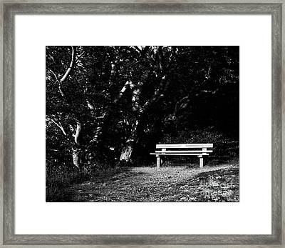 Wooden Bench In B/w Framed Print