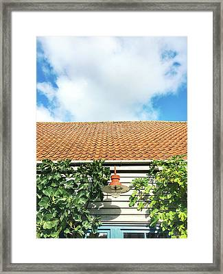 Wooden Cabin Exterior Framed Print by Tom Gowanlock