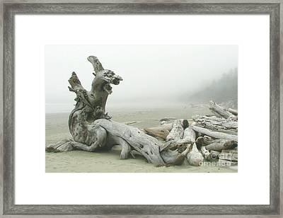 Wooden Dragon Framed Print