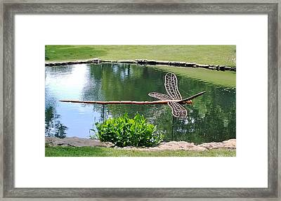 Wooden Dragonfly  Framed Print by Gayle Miller