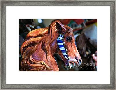 Wooden Horse Framed Print by John S