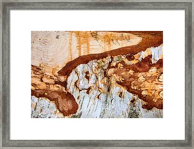 Wooden Landscape - Natural Abstract Structure Framed Print by Matthias Hauser