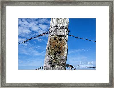 Wooden Post Framed Print by Bernard Jaubert