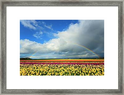 Wooden Shoe Rainbow Framed Print