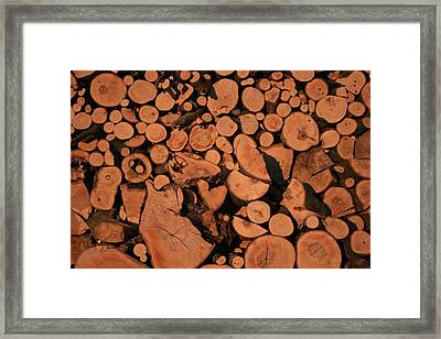 Wooden Wall Framed Print by Marta Grabska-Press