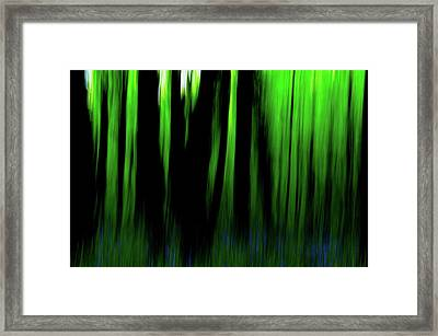 Woodland Abstract Iv Framed Print
