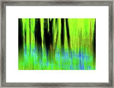 Woodland Abstract Vi Framed Print