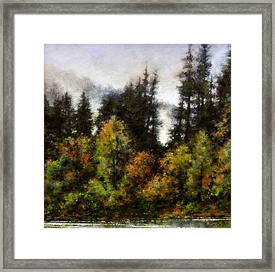 Woodland Bottoms In April Framed Print