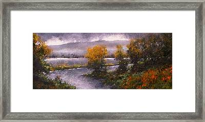 Woodland Bottoms Framed Print